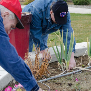 2 elderly men gardening at Jerome, ID elderly care facility